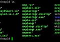NXP服务端安装目录文件详解